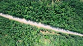 Aerial view of road through the forest. Camera rotation clockwise