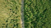 Aerial drone shot over the forest road. Drone flies forward above the road, cars 動画素材