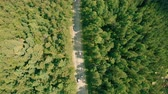 Aerial drone shot over the forest road. Drone hovering above the road, cars