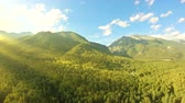Aerial shot above the forest. Flight along the mountains. Panning to the left. Drone flies over the green trees. Beautiful landscape: mountains, woods, sun rays and blue sky with white clouds. Flare Стоковые видеозаписи