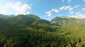 sol : Aerial shot above the forest. Flight along the mountains. Panning to the left. Drone flies over the green trees. Beautiful landscape: mountains, woods, sunlight and blue sky with white clouds Stok Video