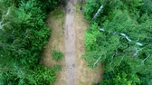 jogging yapan : Aerial view of jogging in the park. Girl running along the forest path. Vertical, top-down, slow motion
