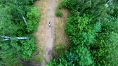 fiets : Aerial view of cycling in the park. Girl riding a bike on a forest trail. Vertical, top-down, slow motion