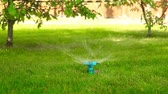 irrigação : Rotating water sprayer on the lawn in motion HD 1920x1080