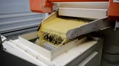 dik : production of pasta on a modern production line