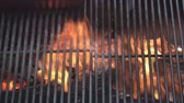 grade : Close up of grill on fire pit 2. Stock Footage