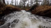 burn : Fast stream in the taiga