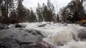 hydrology : Taiga flowing spring river