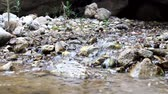 hydrology : Talkative through  noise of  water stream