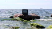 gag : Concept: ubiquitous TV. TV stands in waves, in background sailing ship. Birds fly