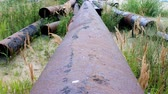 színezett : Dismantle pipeline. Pipe removed and left to rust. Wasteful Russia Stock mozgókép