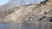 промывали : Water erosion of riverbanks and loss of forests. River washed away shore (bank caving) and washed roots, trees fell