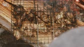 tentador : Barbecue garden party (cookout, family outing). Pieces of kebab roasted in grill on coals that are isolated logs (to smoke) Stock Footage