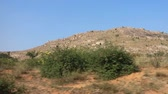subtropics : Ancient mountain country. Panorama of Deccan plateau (India) with Bush clad hills