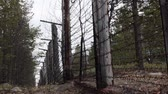 espada : Aftermath of war, cold war. Rusty barbed wire (in two rows) on former border of Soviet Union on Scandinavian Peninsula