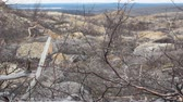 erodált : forest-tundra turned into desert after contamination of soil and air by metallurgical plant, subsequent fires