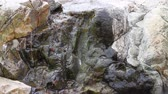 hydrology : Tiny stream coursing through granite stones. Nature in miniature Stock Footage