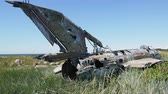 gramíneo : Unique video. war plane crashed on shore of sea several years ago and lies on grassy dunes Vídeos