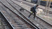 tehditler : Badarwas, India -February 20, 2016: mess on railway. Animal on  tracks