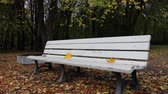 pew : Falling leaves. Autumn in city Park in yellow leaves. Yellow maple leaves on garden bench, sad mood of past summer Stock Footage