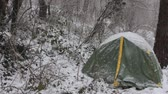 予期している : Tent is covered with snow. Unexpected cold and overnight hikers in subtropical snow-covered forest. Wet snow as natural disaste
