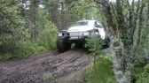 amphibious : Solovki, Russia - August 20, 2014: all-terrain vehicle with tourists driving on a forest road Stock Footage