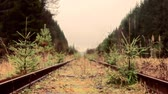 csúszik : Railway siding, railway deadlock, dead-end track in forest