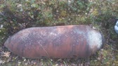 arsenal : Echo of war - discharged bomb during second world war in forest Stock Footage
