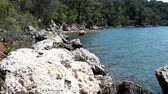 littoral : Southern shores of Aegean sea covered with chaos of volcanic tuff, subtropical forest. Very picturesque