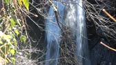 수분이 많은 : High but are not abounding in water falls in the period of winter runoff low. Water jets shot through the bare branches of trees