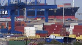 gantry : 4K General shot of the container location in sea port Stock Footage