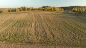 Aerial view of the plowed field during sunset