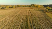 arando : Aerial view of the plowed field during sunset