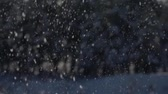 landslide : Shiny snowflakes fall on the forest background. Slow-mo footage.