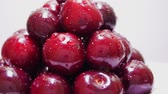 waterdrop : Group of Ripe Juicy Dark Red Cherry Rotates on the White Background. Drops of Water on Fresh Cherry Berries. Pile of Cherry Fruit Pour Water. Rotating of Pile Wet Ripe Sweet Cherries. Juicy Cherries With Waterdrop Rotate Stock Footage
