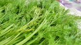 erva doce : Bunch of fresh organic dill on table. Organic vegetables healthy herb leaf of fennel