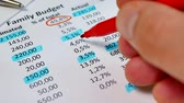 accountancy : Analysis monthly income and expenses. Family budget or monthly payments