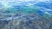 szablon : Blue transparent water surface on sea or ocean with small waves from the wind Wideo