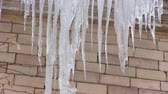 icicle : Icicles hang from roof of brick house on frosty cloudy day in winter Stock Footage