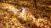 Little cute girl in blue neon color hat and yellow scarf jumping into leaves at park in autumn and trees