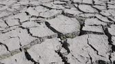 витать : Dry fractured soil of drought on lake, river or sea bottom. Concept of drought, ecology catastrophe, climate change or death without moisture