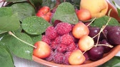abricot : Sweet fresh red and yellow cherries, apricot fruit and raspberries with water drops and green leaves in brown bowl. Ripe fruit and healthy food concept