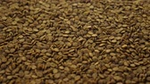 aquaculture : Brown granular fish feed for service feeding aquarium pets. Animal care or pet zoo store concept