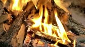 glowing : Wood burning on fireplace Stock Footage