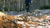 Young man walking on frozen ground in old forest slow motion low view