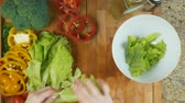 Preparing Salad dish Stock Footage