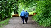 old age, retirement - happy senior couple walking at summer city park Vídeos