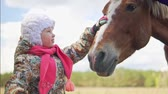 dotyk : A little girl is stroking the horse in the face. Close-up, slow-motion