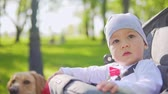 чувство : A one-year-old child drives in a stroller with parents in the park. Slow motion