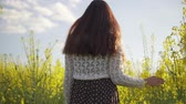 long hairs : A young girl is walking on a canola field Stock Footage